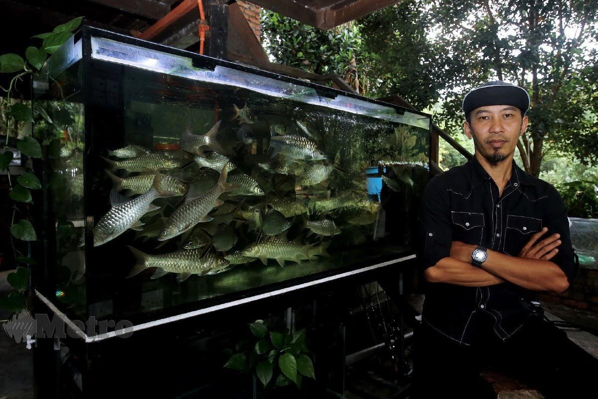 ZULFADLY bersama ternakan ikan kelahnya di Tebat Sanctuary, Kampung Simpang Gelami, baru-baru ini. FOTO Bernama