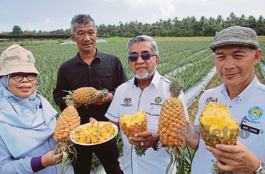 ABDUL Malik (dua dari kanan) turut tertarik dengan nanas itu.