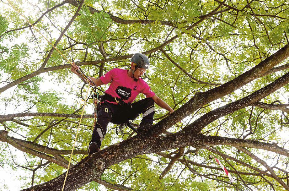 PUTRAJAYA 06 JANUARI 2020. Antara peserta yang menyertai Malaysia Tree Climbing Championship di Millennium Monument, Putrajaya. NSTP/AHMAD IRHAM MOHD NOOR.
