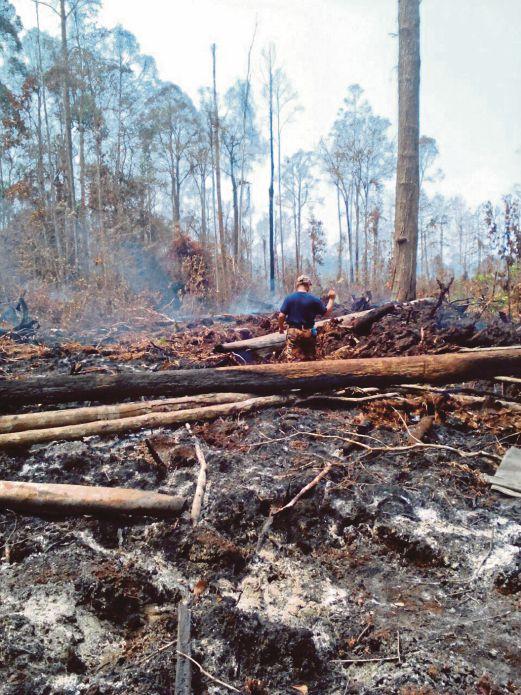 ANGGOTA Bomba  Banting melakukan kerja pemadaman kebakaran di Hutan Simpan Kuala Langat Selatan.