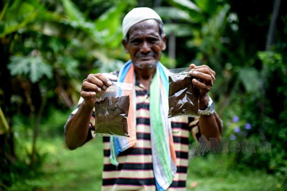KOPI yang  sudah siap dibungkus  di Kampung Belantik Dalam.