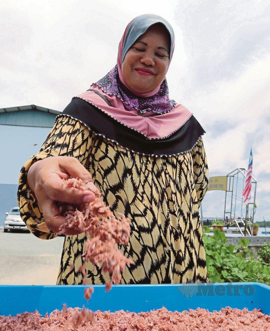 MAHIRAN menunjukkan udang geragau yang digaul dengan garam sebelum dijemur dan dijadikan belacan di Kampung Sungai Melayu, Iskandar Puteri.