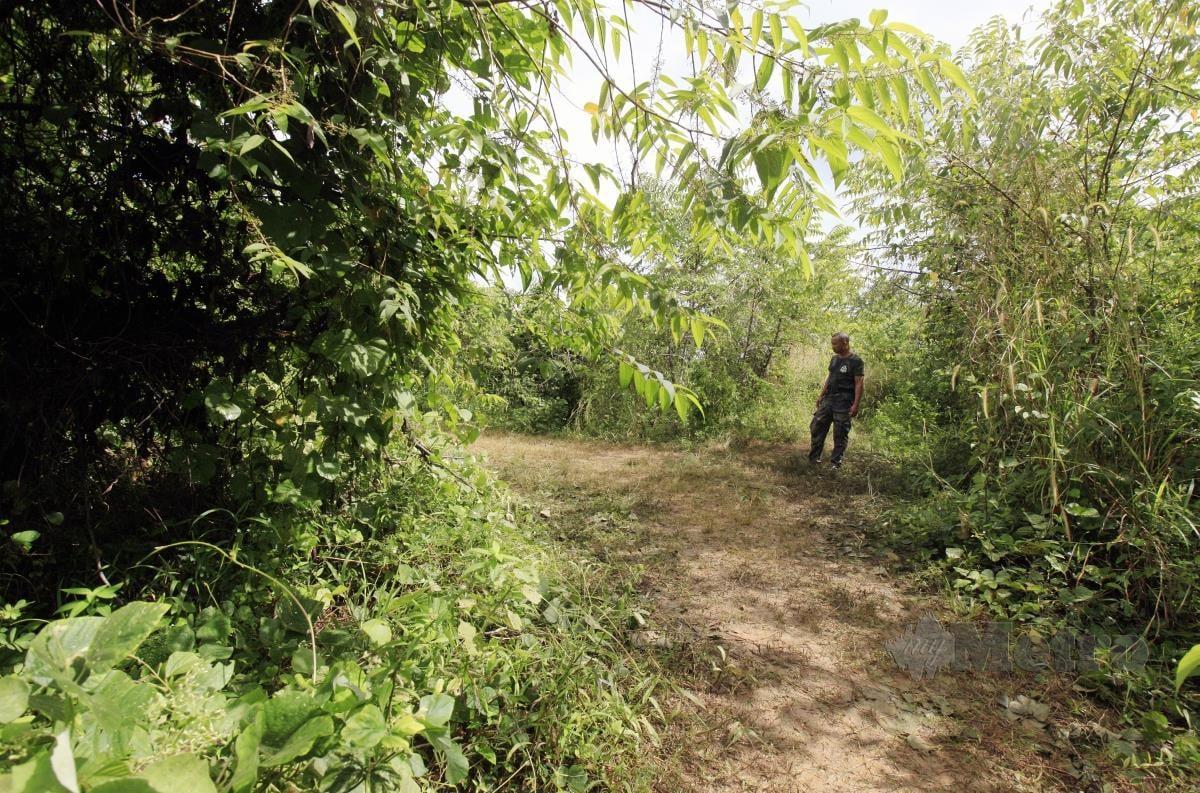 Anggota PGA, Judin Awi meninjau tempat kejadian  seorang anggota Pasukan Gerakan Am (PGA) yang maut akibat ditembak  oleh penyeludup yang dipercayai warganegara Thailand berhampiran pos sempadan Malaysia-Thailand. FOTO AMRAN HAMID