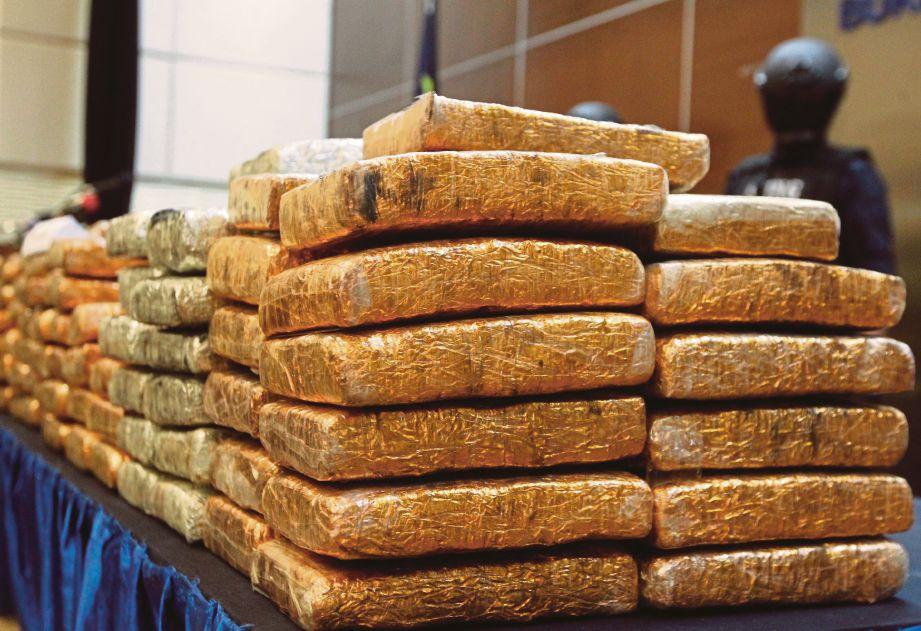 GANJA  bernilai RM618,000 yang dirampas di Kajang dan Klang.