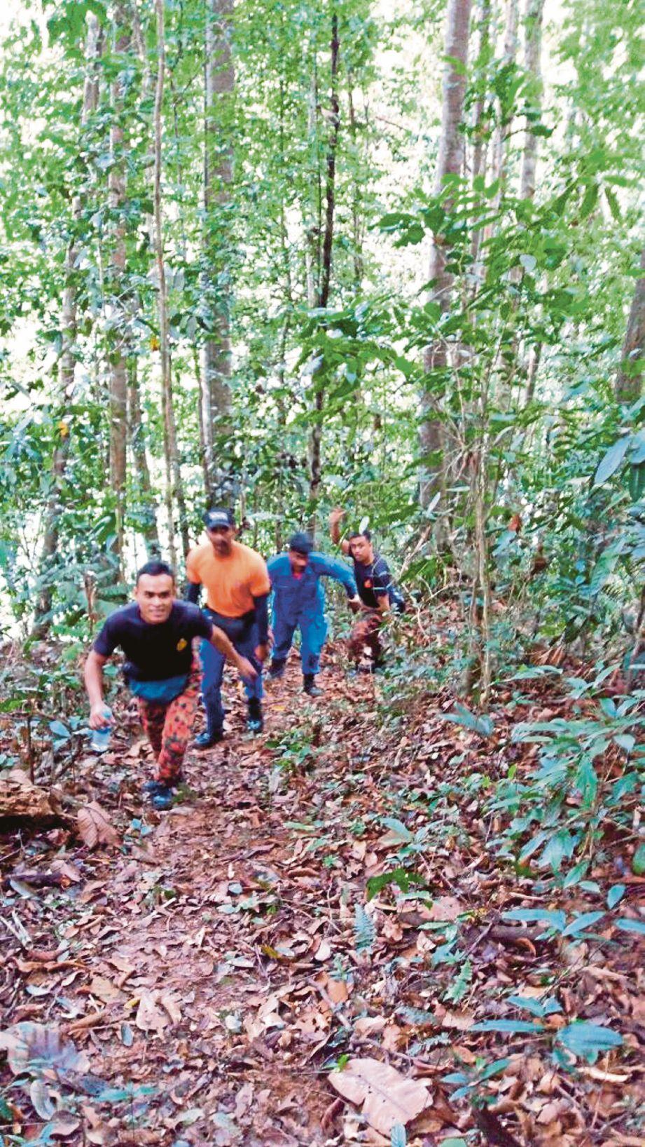 Anggota bomba melakukan operasi mencari mangsa di kawasan hutan Gunung Semangkuk, Bukit Fraser.