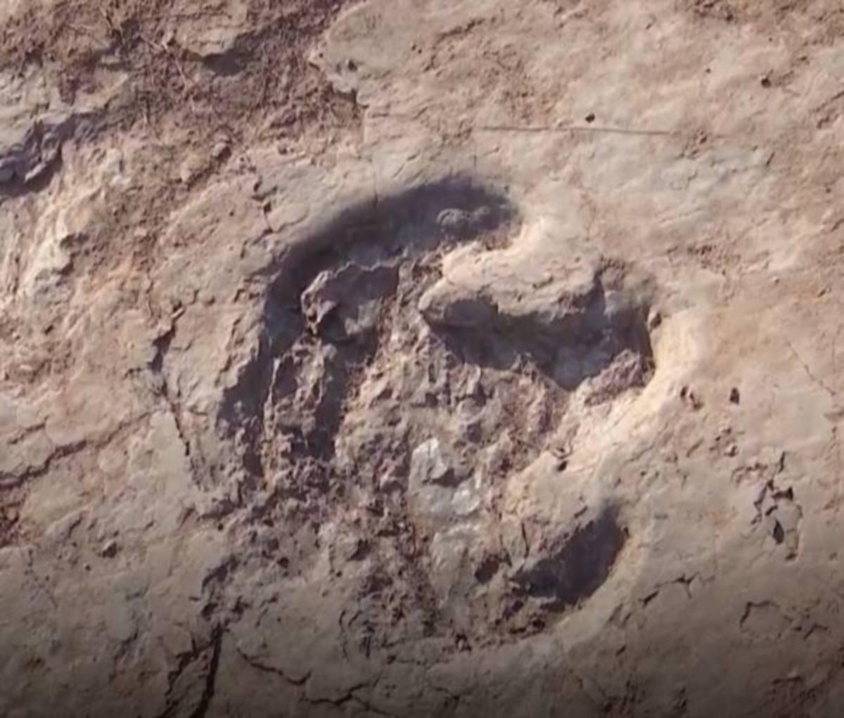 FOSIL tapak kaki dinosaur. FOTO Agensi