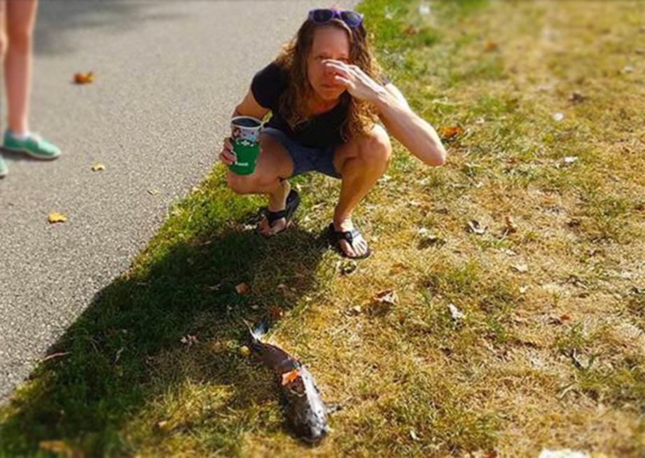 LISA melihat ikan keli yang jatuh dari langit dan menghempap kepalanya. - Agensi