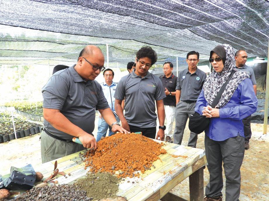 PENGURUS Projek TRLC Merisuli Benny Banus Tuzan (kiri)  dan Dr Dzaeman menunjukkan bagaimana penanaman kepada Dr Yatela dan pengunjung yang hadir.