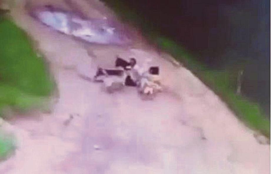 Lelaki mabuk maut dibaham anjing liar kerana tak bawa makanan