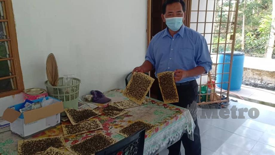 Rahmad Mariman menunjukkan perangkap lalat digunakan anggota komuniti di Kampung Kelemak, Alor Gajah.