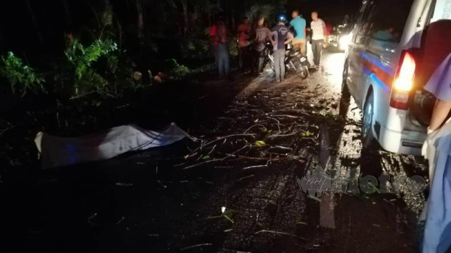 MAYAT lelaki warga Myanmar yang meninggal dunia selepas motosikal yang ditunggangi bersama rakannya melanggar pokok tumbang. FOTO Ihsan Bomba