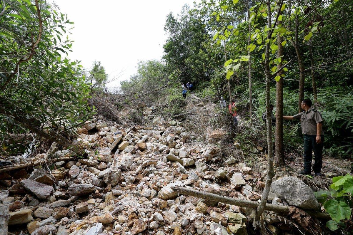 Kawasan hutan berdekatan kawasan Perumahan Bukit Bayu, Seksyen U 10, gambar fail 2018. FOTO NSTP