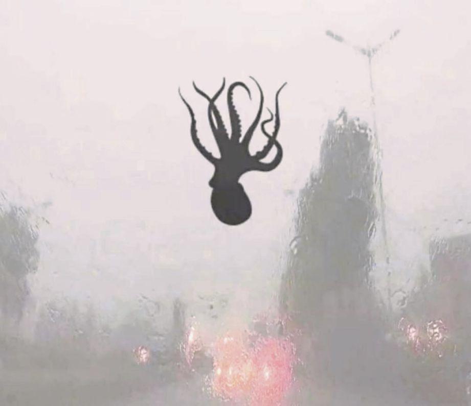 GAMBAR menunjukkan seekor sotong kurita melekat pada cermin kereta ketika ribut melanda bandar Qingdao, China. - Agensi