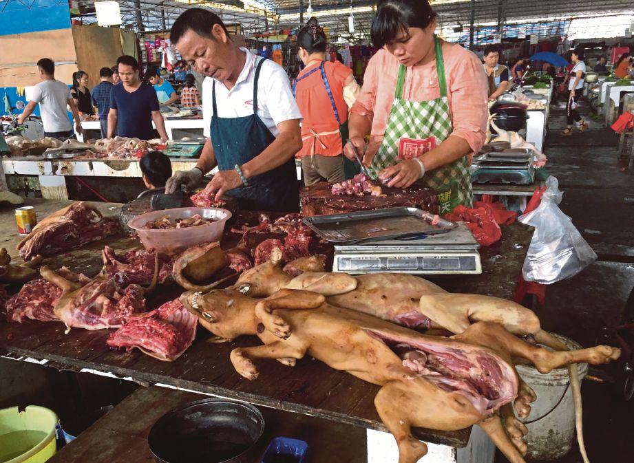 PENIAGA menyiang daging anjing  di pasar Nanqiao di Yulin di wilayah Guanxi, selatan China, semalam. - AFP