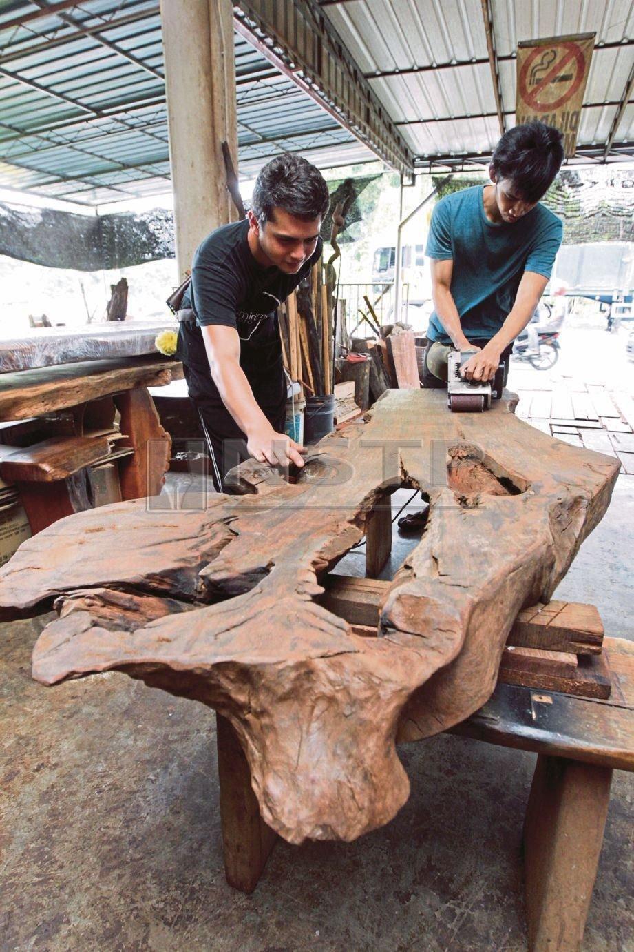 HAMDAN (kiri) bersama pekerjanya melakukan proses membersih kayu hanyut untuk dijadikan meja.