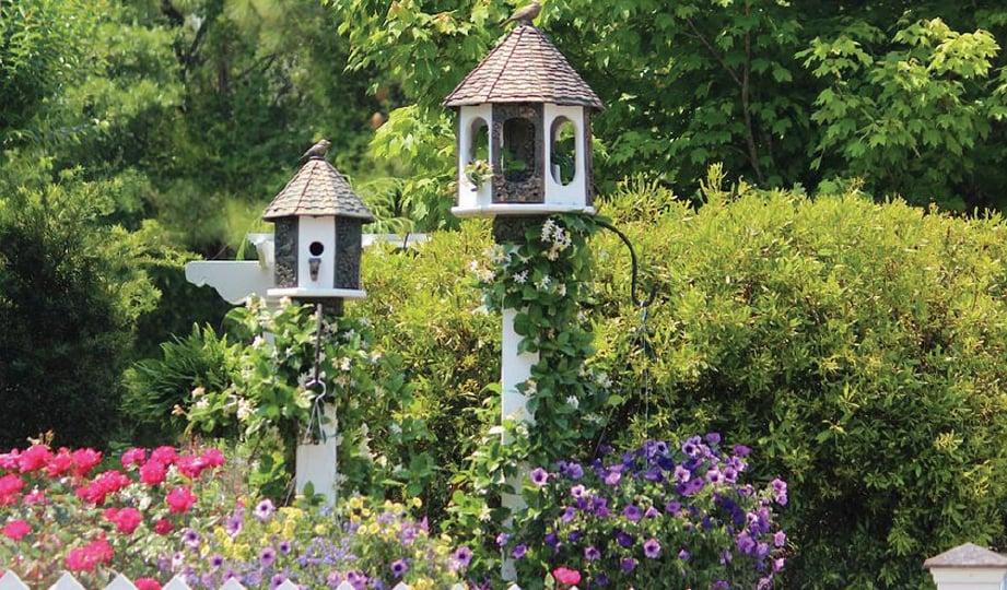 CONTOH taman yang menggunakan rumah burung sebagai dekorasi menarik.