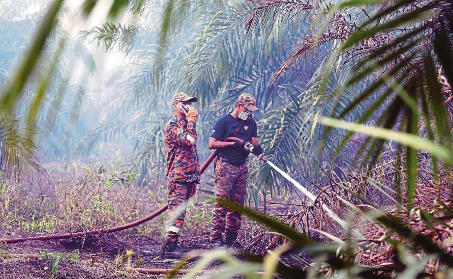 ANGGOTA bomba melakukan operasi pemadaman kebakaran hutan  berhampiran Kampung Tanjung Adang dan Kampung Pekajang, Gelang Patah. FOTO ihsan bomba