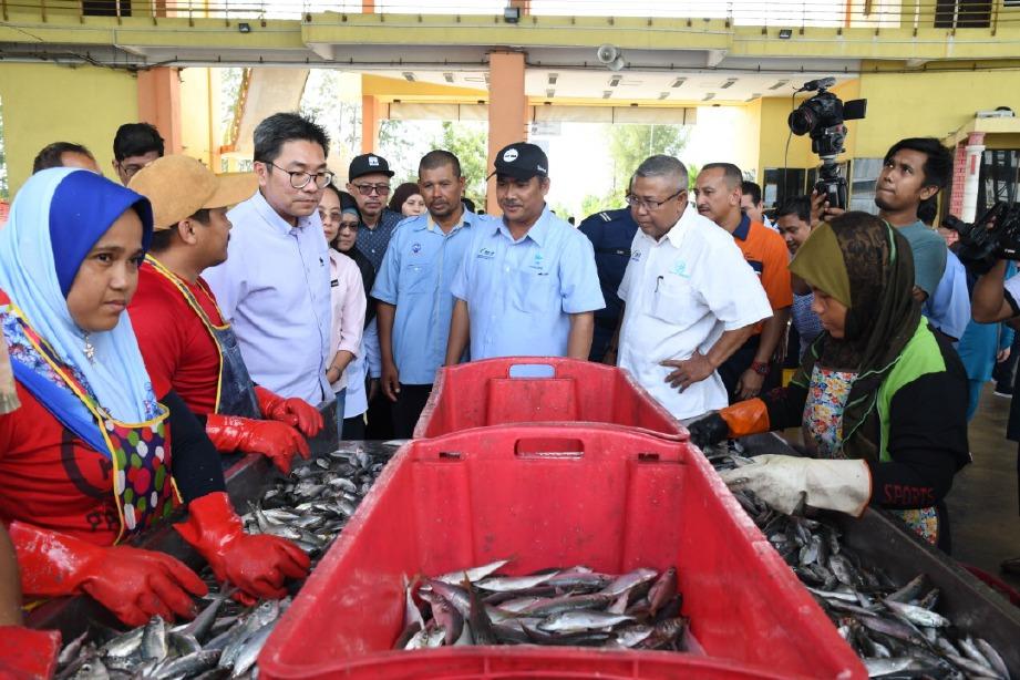 TIMBALAN Menteri Pertanian dan Industri Asas Tani, Sim Tze Tzin meninjau aktiviti penggredan ikan di Pelabuhan LKIM Tok Bali, Kelantan.