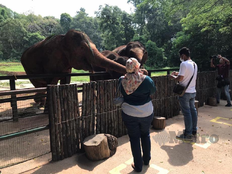 PENGUNJUNG memberi makanan kepada haiwan di Zoo Melaka, Ayer Keroh.