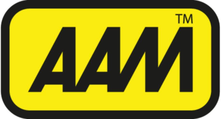 AAM gagal ikut peraturan Pejabat Pesuruhjaya Sukan.