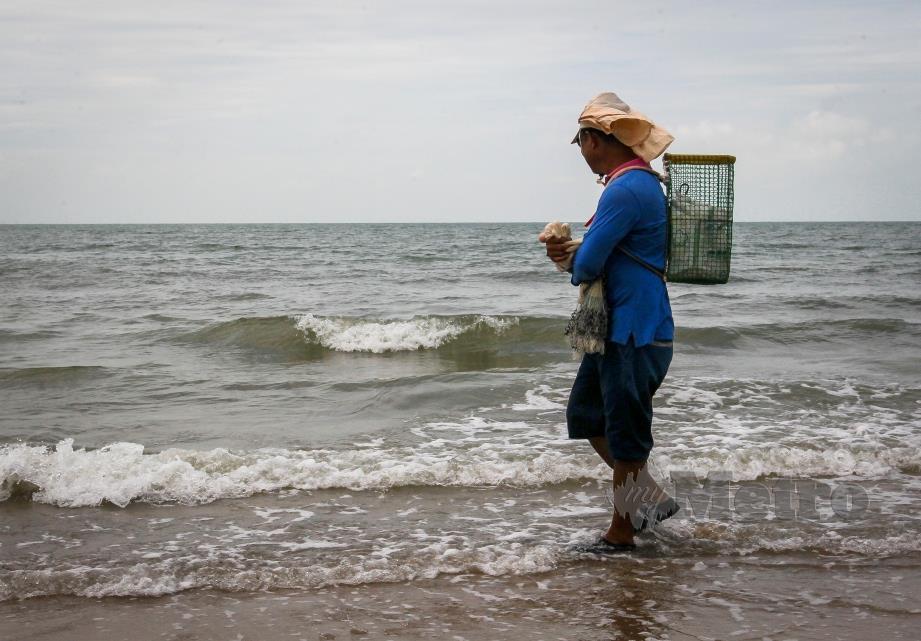 SEORANG nelayan menjala ikan seperti biasa di pantai Saujana, Batu 4, yang tidak terjejas dengan fenomena air laut pasang besar yang melanda pesisir pantai Selangor. FOTO AZRUL EDHAM MOHD AMINUDDIN