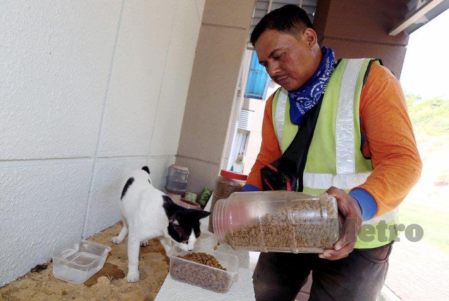 MOHAMAD Azhar memberi makan kepada kucing jalanan. FOTO Hairul Anuar Rahim