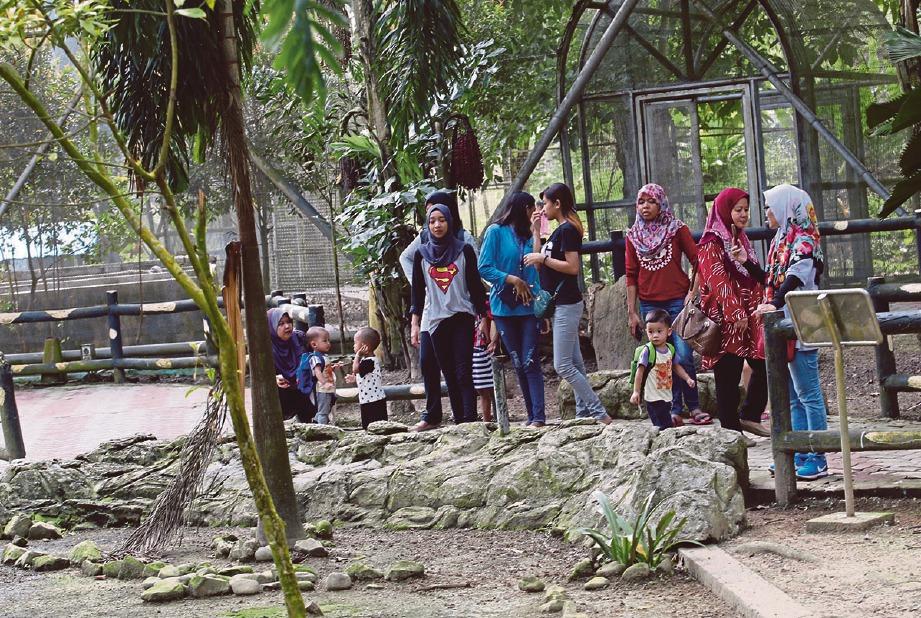 TAMAN Burung Labuan menjadi tumpuan pengunjung. FOTO Nurul Shafina Jemenon