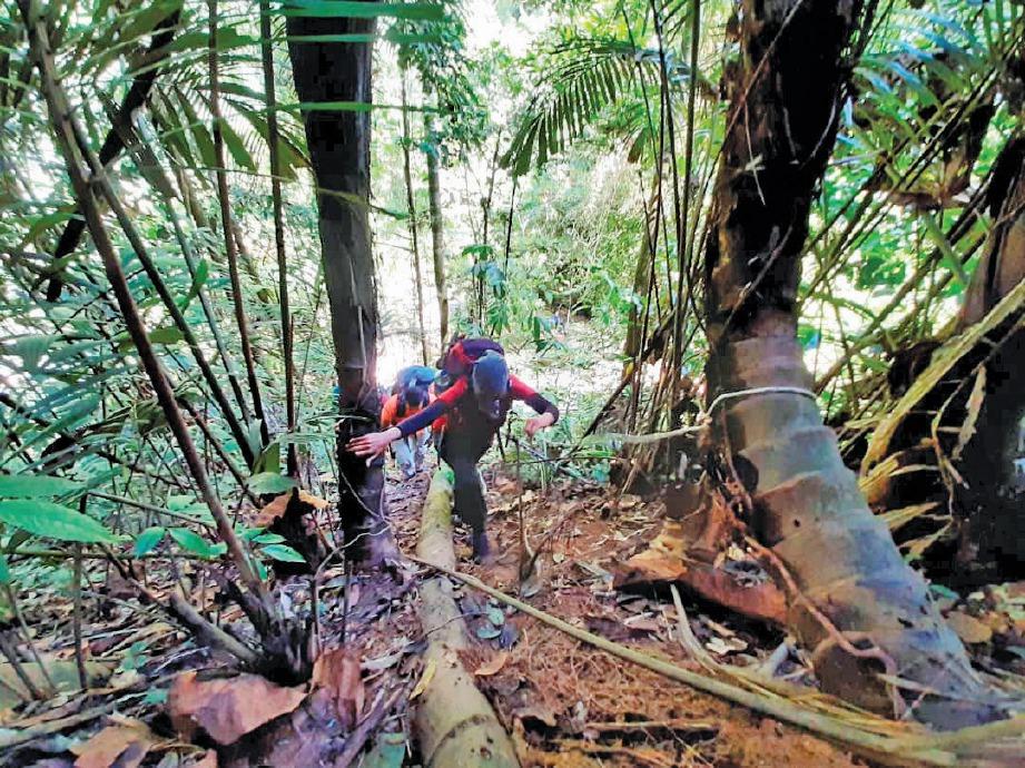 PENDAKIAN mencanak dan menguji ketahanan fizikal dan mental pendaki. FOTO Zulkefli Osman
