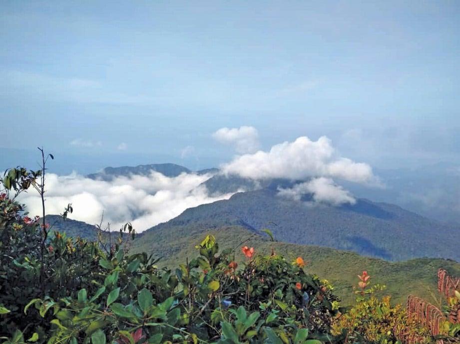 PEMANDANGAN indah di puncak Gunung Tapis. FOTO Zulkefli Osman