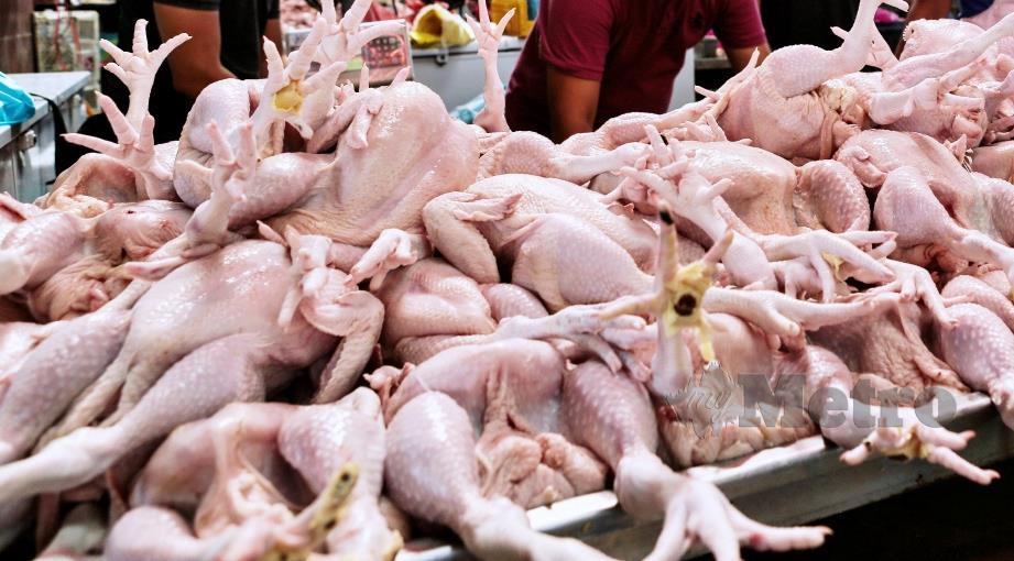 KPDNHEP membuka lapan kertas siasatan terhadap peniaga ayam yang disyaki melakukan kesalahan menaikkan harga sesuka hati. FOTO NSTP