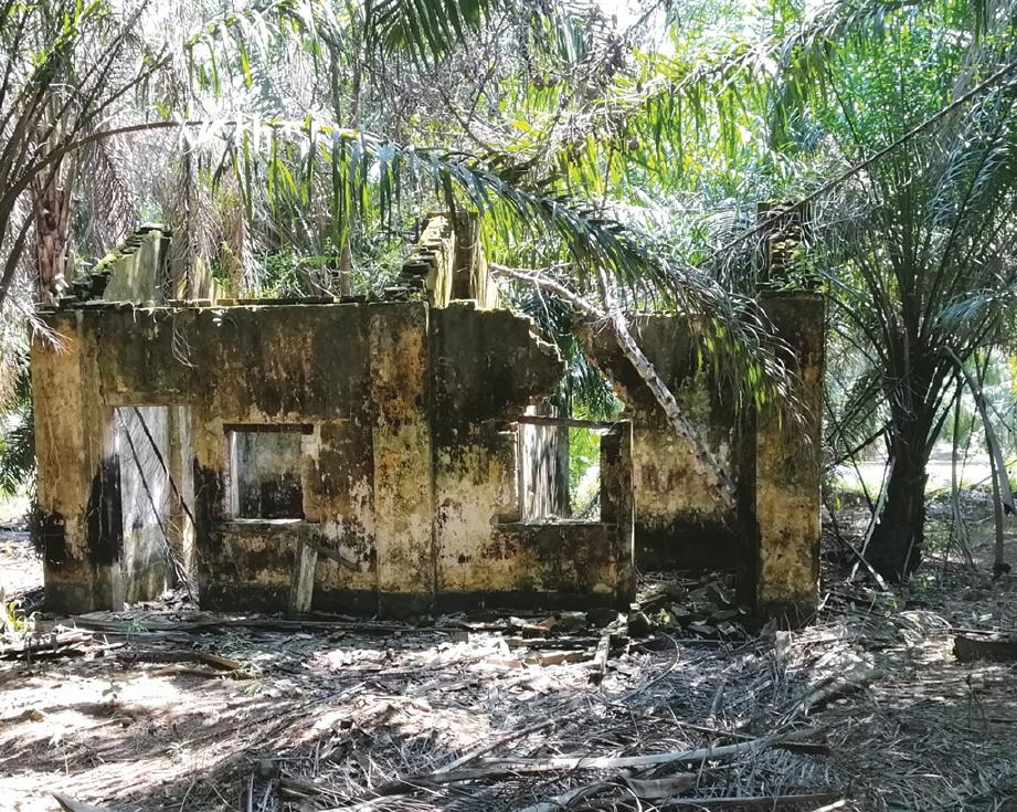 PENINGGALAN kuartes kediaman kakitangan Stesen Keretapi Ayer Hitam dalam kebun kelapa sawit.