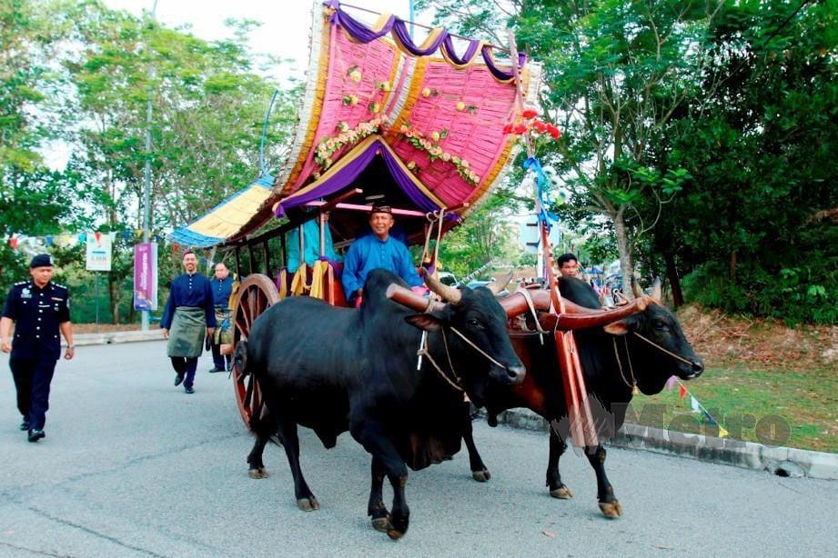 Pertahan warisan kereta lembu   Harian Metro