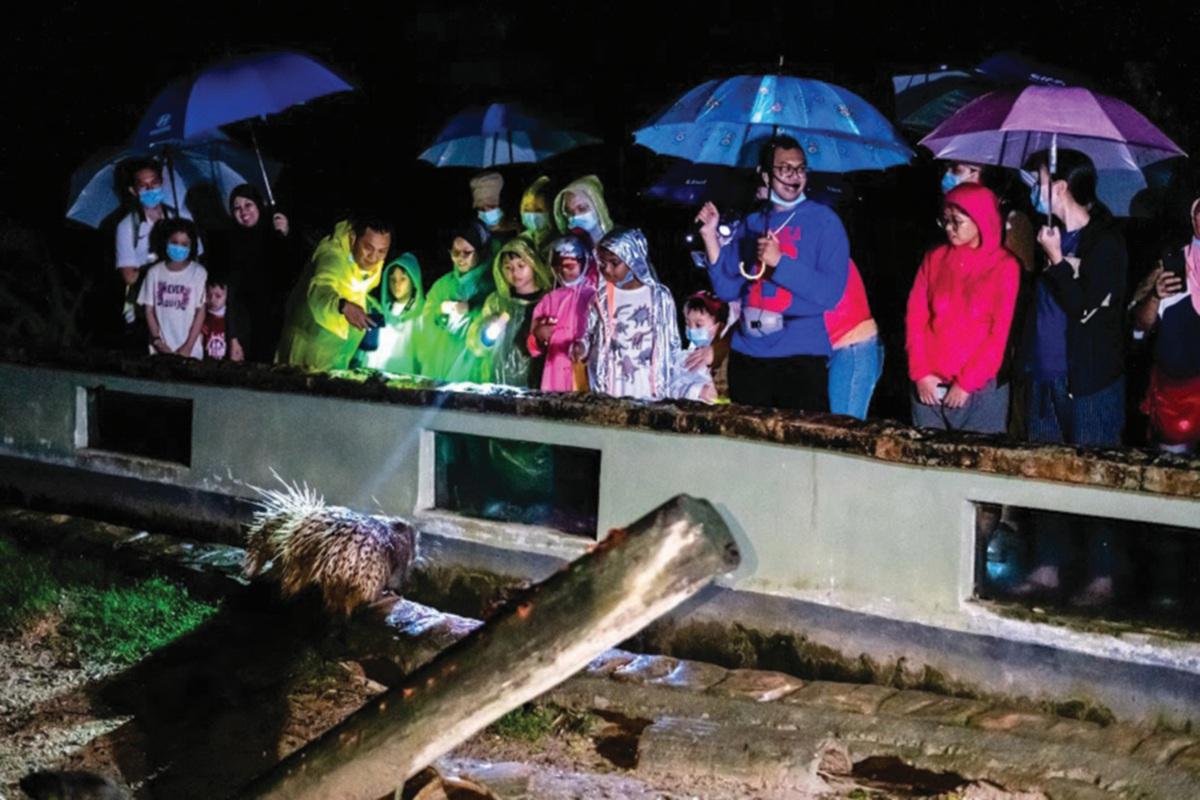MENIKMATI pengalaman meninjau kehidupan di Zoo Negara ketika waktu malam.
