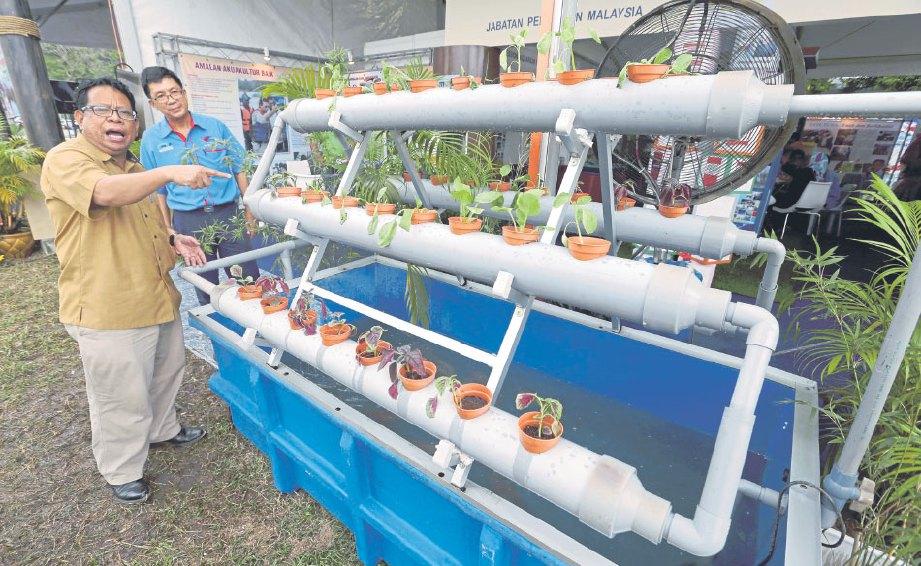 BAH Piyan menunjukkan bagaimana aquaponik berfungsi.