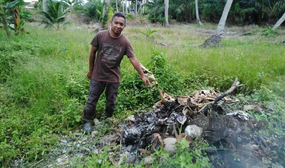 HASIM menunjukkan bangkai ayam terpaksa dibakar selepas digigit kumpulan anjing liar di reban ternakannya di Jalan Sungai Lias Baroh, Sungai Besar, Sabak Bernam, hari ini. FOTO AMIRUL AIMAN HAMSUDDIN