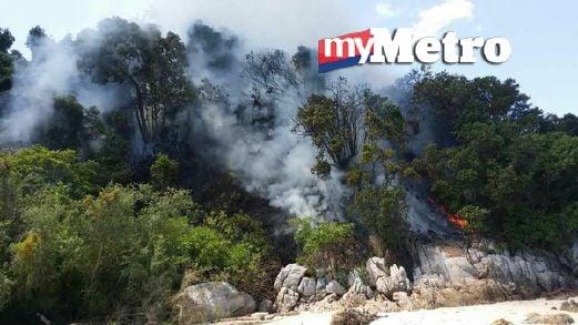 Sebahagian hutan di Pulau Lalang yang terbakar. FOTO ihsan Perbadanan Taman Negeri Perak