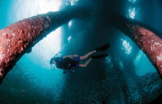 PELBAGAI objek di dasar laut.