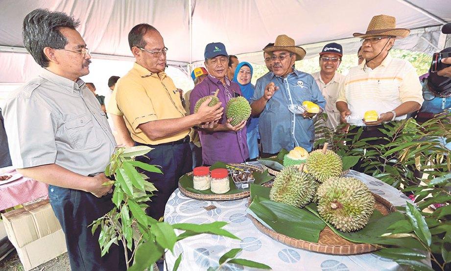 GIMIK perasmian Program Moh Makan Durian.