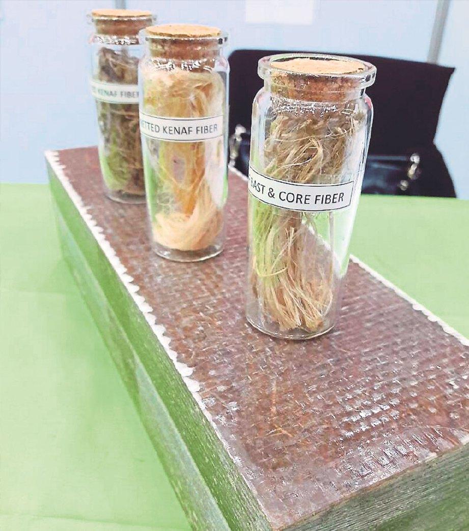 PELAPIK menggunakan teknologi hijau yang diperkuatkan gentian FRP daripada pokok kenaf dan gentian kaca.