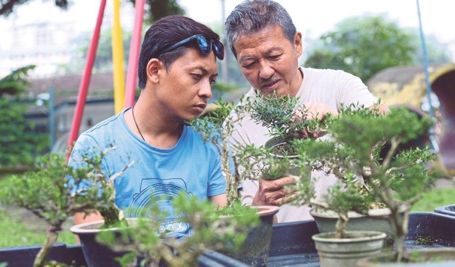 PENGUNJUNG membelek bonsai ada ketika Karnival Bonsai 2018.