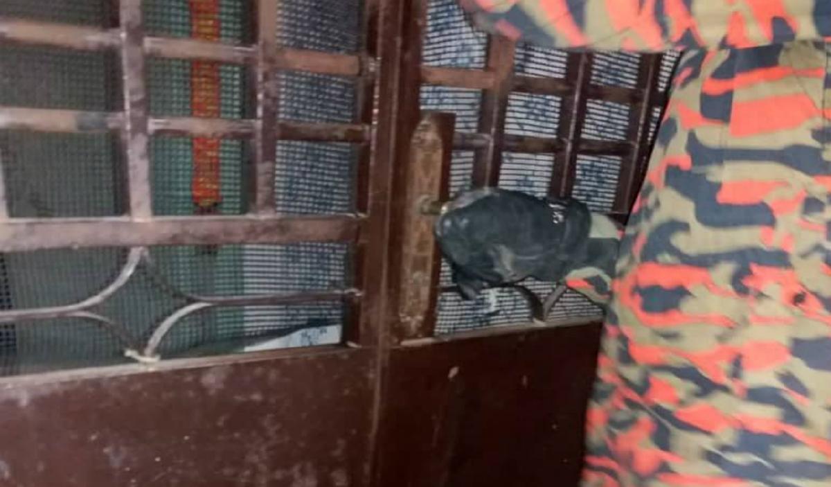 ANGGOTA bomba cuba membuka pintu jeriji rumah sebelum mangsa tersedar. FOTO Ihsan Bomba.