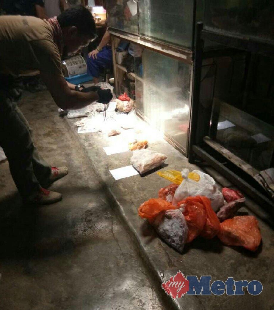 PELBAGAI daging hidupan liar yang disembunyi suspek di dalam peti sejuk. FOTO NSTP