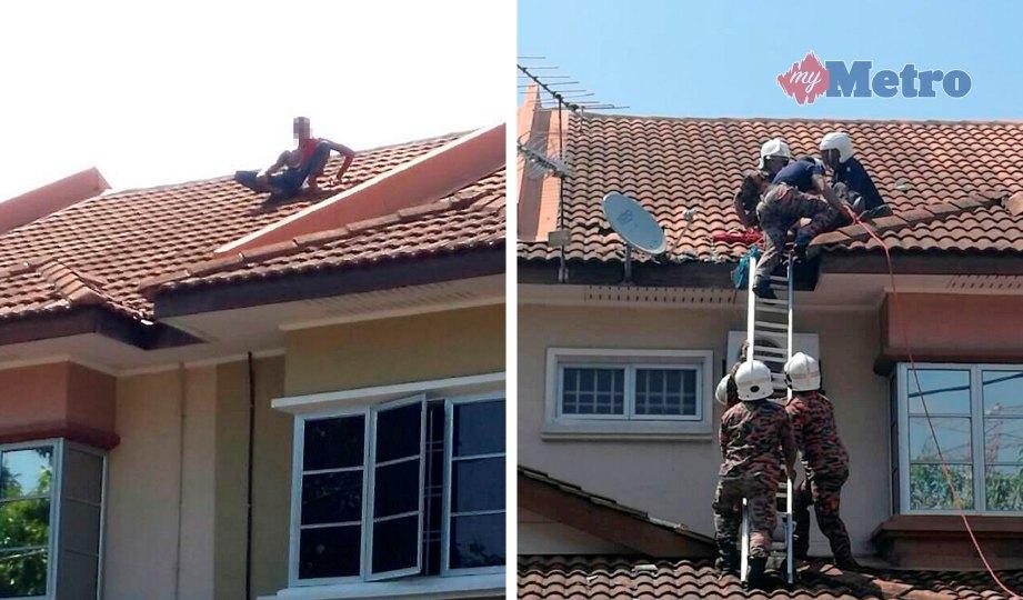 GELAGAT lelaki disyaki menceroboh rumah enggan turun selepas dikepung penduduk. Gambar kanan, anggota bomba membantu menurunkan lelaki yang enggan turun semalam. FOTO NSTP