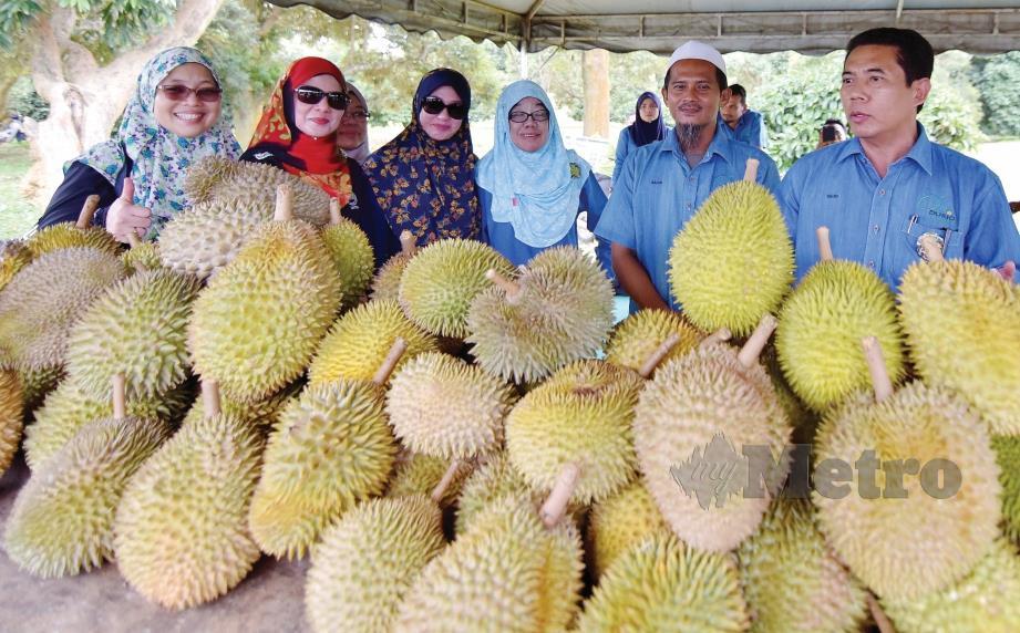 ORANG ramai teruja mendapatkan buah durian berkualiti dalam program Duriotourism Kuala Kangsar Perak 2019. FOTO NSTP
