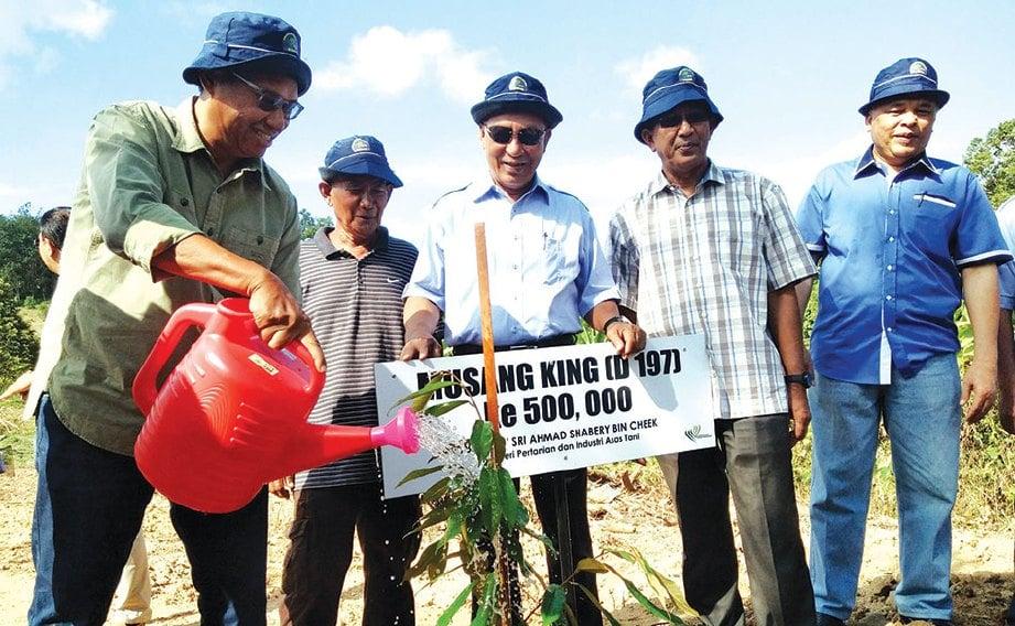 AHMAD Shabery menyiram pokok durian Musang King di Kluster Durian Raub, di Kampung Pamah Rawas sebagai gimik ketika Majlis Penanaman Musang King ke 500,000.