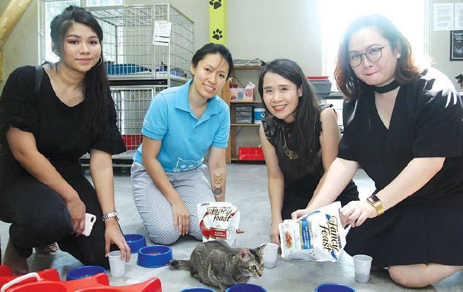 LAM (dua dari kanan) dan Pegawai Pendidikan SPCA Pyo Ng (dua dari kiri) memberi kucing makan di pusat jagaan disediakan SPCA.