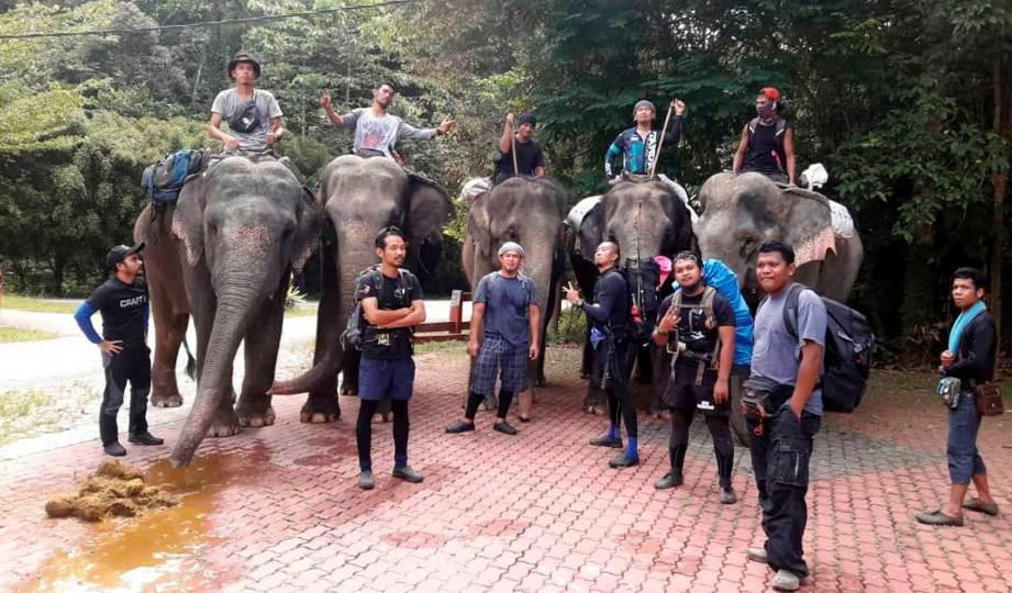 LIMA ekor gajah denak Pusat Konservasi Gajah Kebangsaan (PKGK) Kuala Gandah digunakan untuk menyalurkan bantuan kepada Orang Asli di pedalaman. FOTO NSTP