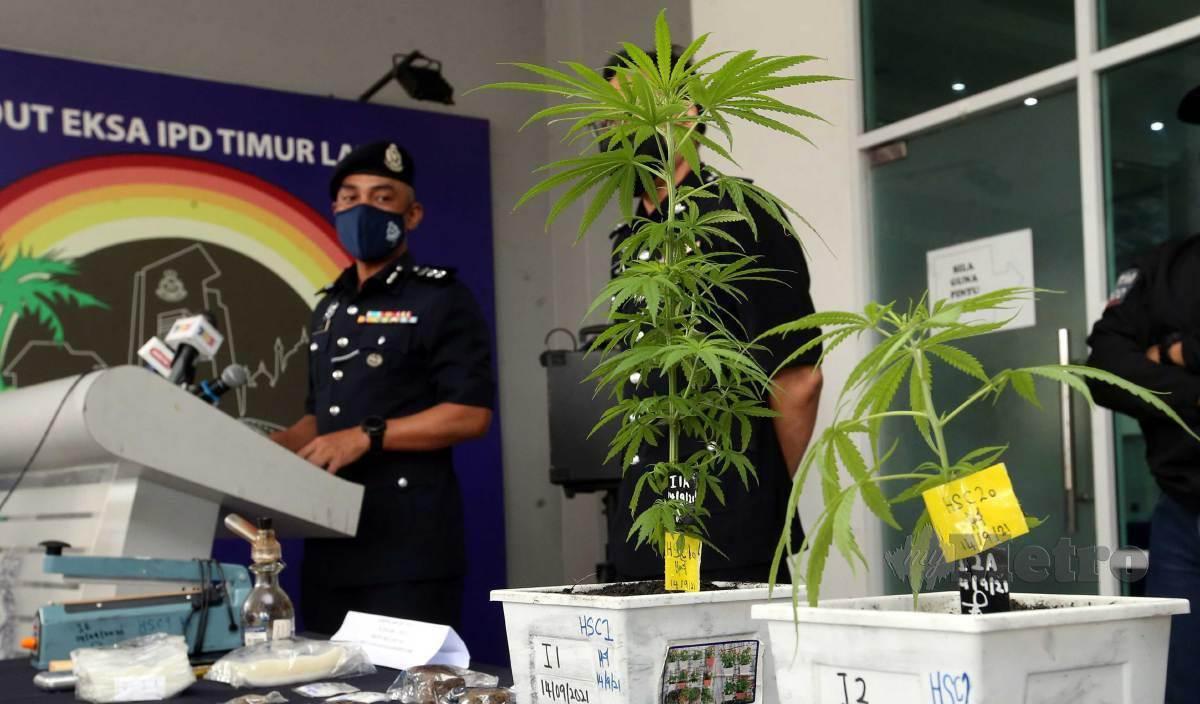 SUFFIAN Santong (kiri) ketika sidang media rampasan pokok ganja dan pelbagai jenis dadah di Ibu Pejabat Polis Daerah (IPD) Timur Laut. FOTO Danial Saad
