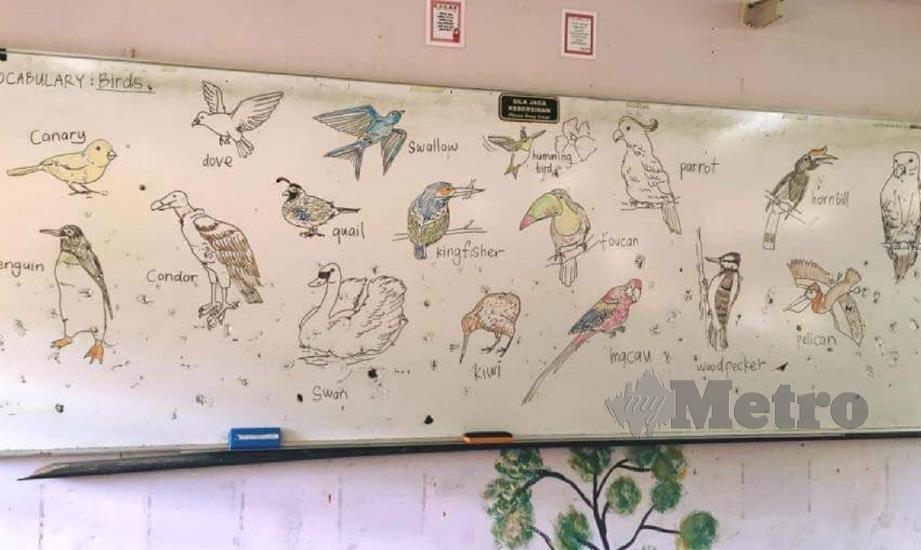 LUKISAN burung digunakan untuk membantu penguasaan kosa kata pelajar dalam Bahasa Inggeris. FOTO Ihsan Shahrizal Sha'ari