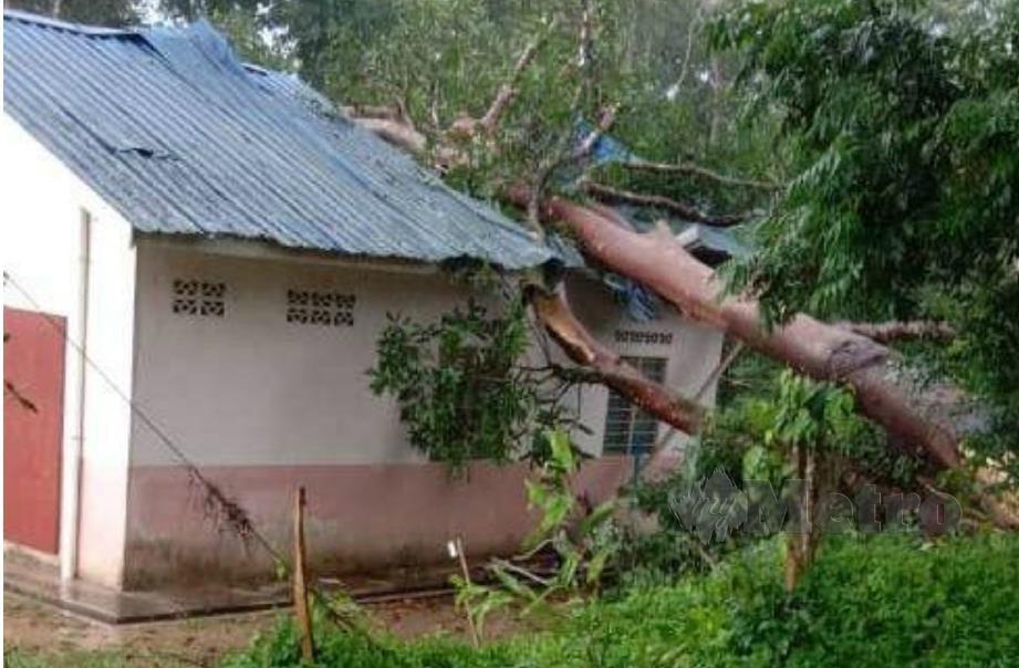 POKOK besar yang menghempap rumah Mohd di Paka, Dungun, hari ini. FOTO Rosli Ilham.